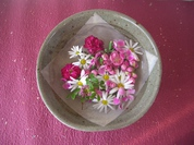 おひなさま浮かぶ花