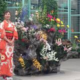 Yue Flower Live
