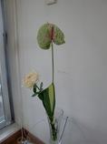 右記の舞台花の小分け一人用花束
